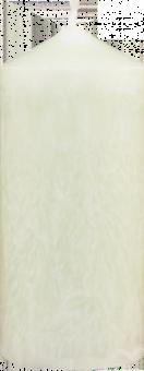 Palmová svíčka široká